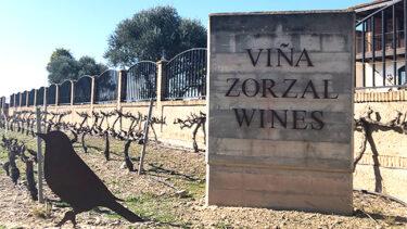 ワインフィッター®︎ゆかりの「今、届けたい」ワインストーリー Episode.1 スペインの新潮流として今最も注目されるワインの造り手、ビーニャ・ソルサル・ワインズ